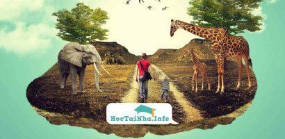 4 Khoá Học Photoshop Online Cực Hay Cho Người Muốn Tự Học Tại Nhà